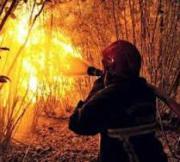 Evaluation de l'efficacité de filtration de la cagoule feux de forêts